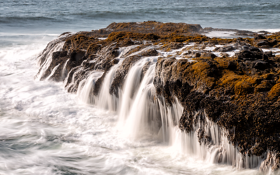 Cape Perpetua