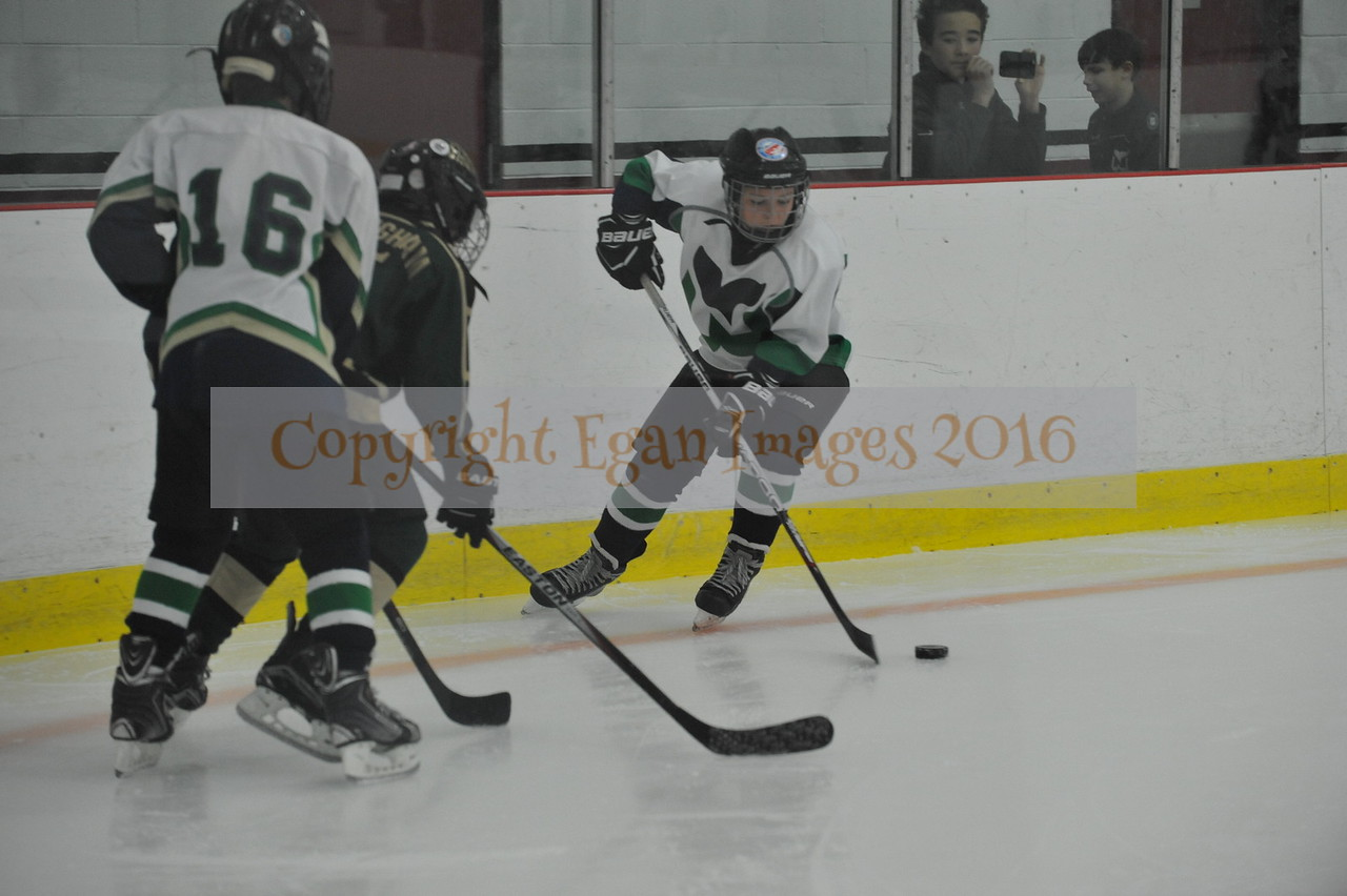 Whalers Tournament 2016_0076