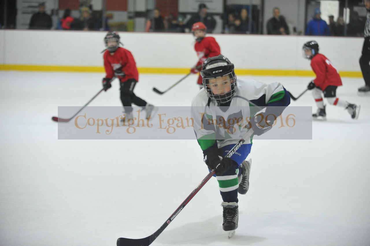 Whalers Tournament 2016_0316