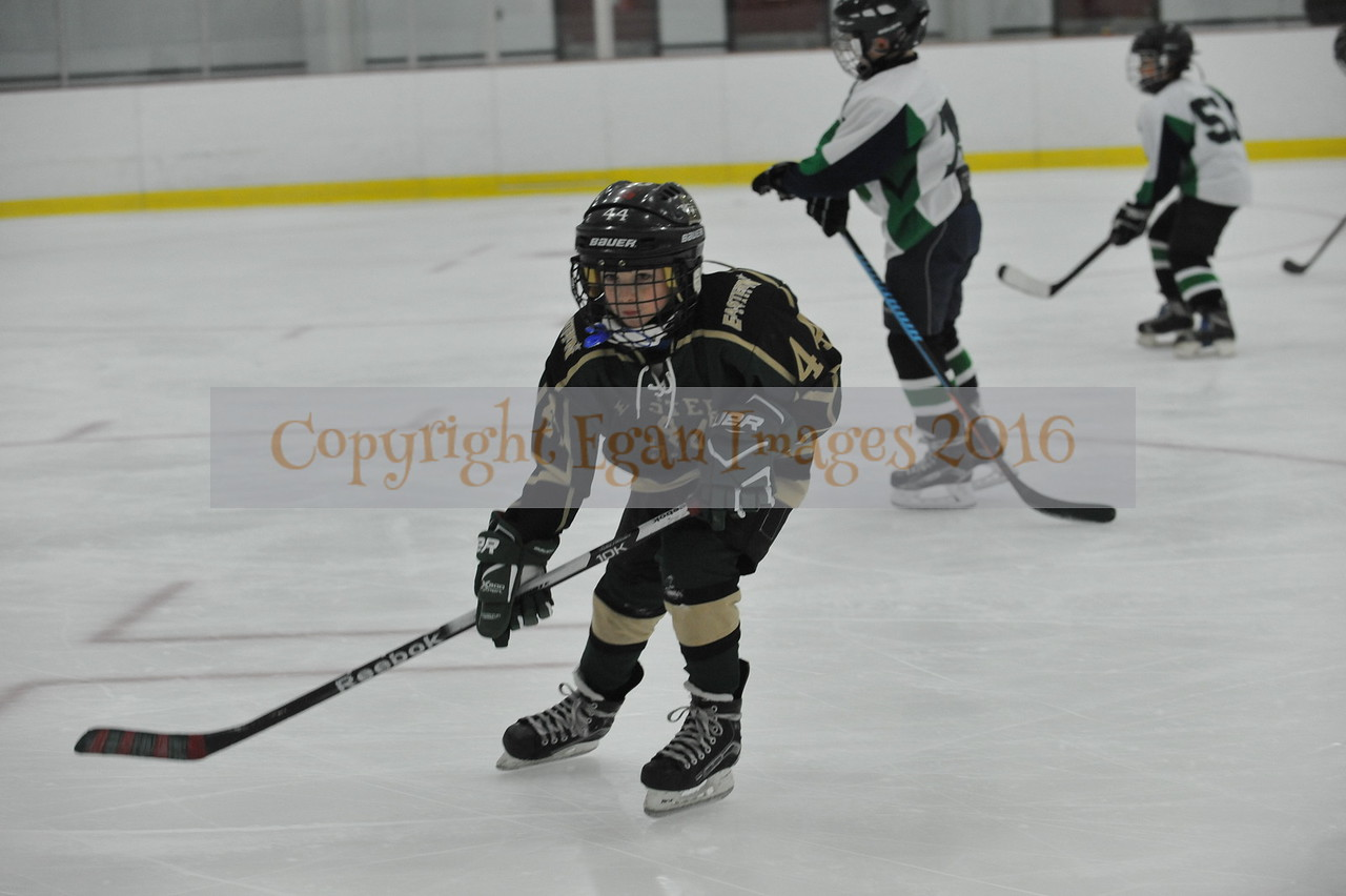 Whalers Tournament 2016_0120