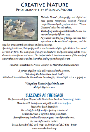 Poster and Announcement for John D MacArthur beach State Park Solo Exhibit