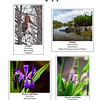2010 Photography Contest Winners