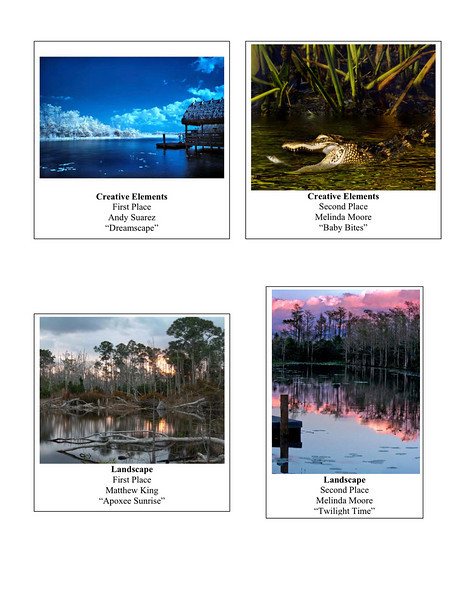 2010 2 Photography Contest Winners