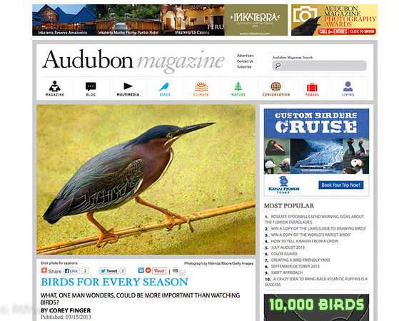 My Green Pack Heron made Audubon magazine !! So excited!