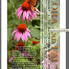 "Flower and Fauna Exhibit. Southeast Gallery of Photographic Art<br />  <a href=""http://www.meetup.com/SEGOPA/calendar/10434092/?a=ce1p_grp"">http://www.meetup.com/SEGOPA/calendar/10434092/?a=ce1p_grp</a>"