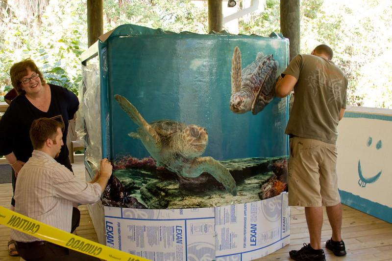 Quite a project doing this large piece of art for MacArthur Beach State Park. The turtles new home.