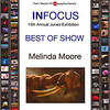 InFocus, Best, Show PalmBeach Photographic center