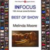 InFocus, Best, Show PalmBeach Photographic center