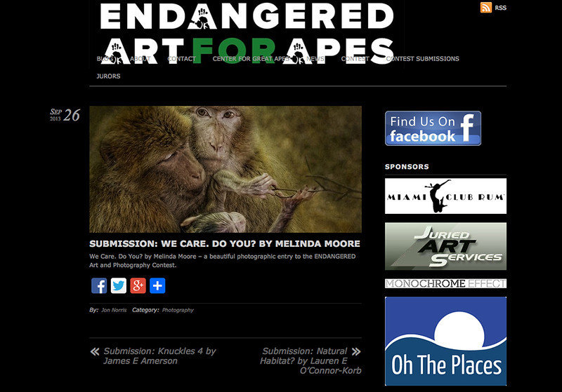 "We Care Do you"" Endangered opening Dec 2013"