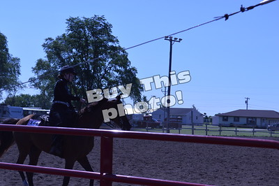 Horse Competiton