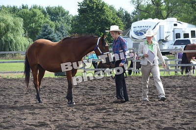 Stearns County Fair Photos2