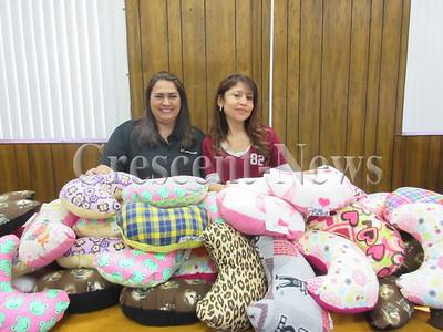 02-18-17 NEWS DP Cancer pillows