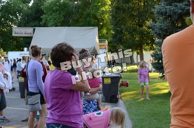 SLD Friday in the park 7/14/17