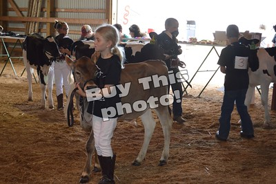 Dairy Day Show