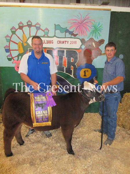06-16-18 news Paulding County Fair Livestock show