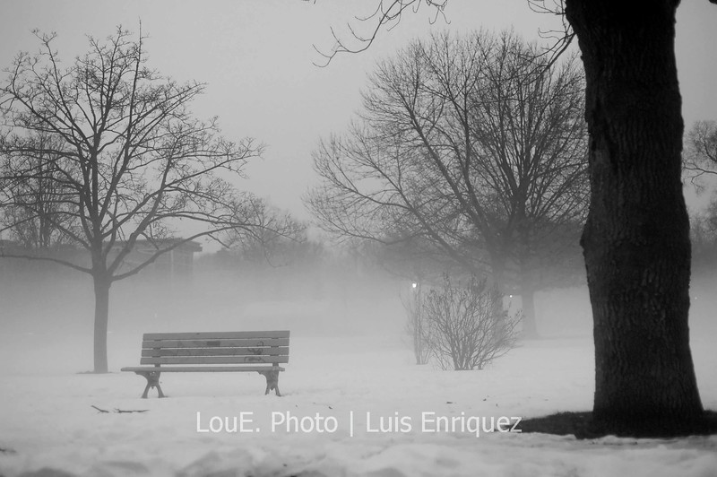 December 27, 2008<br /> <br /> Toronto was in the midst of a balmy 10 degrees above zero after days of temperatures below zero and a pounding of snow.  On the same drive to the restaurant I snapped this shot off.  I thought about skipping dinner and taking out my entire gear to take some wonderful mist shots.  Laziness and hunger got the better of me and I missed a beautiful opportunity.
