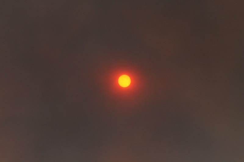 Camp Pendlton Fire 10-08 038