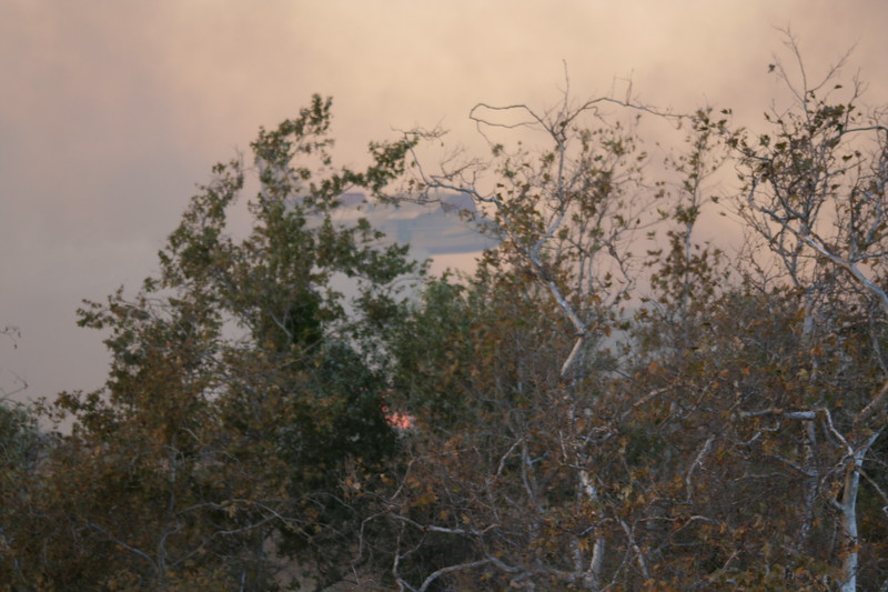 Camp Pendlton Fire 10-08 047