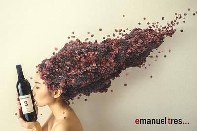 Emanuel Tres Tinto