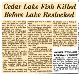The Great Fish Kill At Cedar Lake