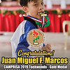 Juan Miguel F. Marcos was felt weak and sick because of a high fever. Yet, his steel-like determination still managed to win the silver medal in the Riprisa Rizal Private Schools Association 2019 Taekwondo tournament last November 29, 2019. Congratulations, Juan Miguel F. Marcos (Uno), for a fantastic performance, despite all odds you did exceptionally well. You were like the main character in an action movie!<br /> <br /> Special thanks to everyone who supported Uno throughout his martial arts journey! Thank you to both Mr. and Mrs. Marcos for their unconditional love and concern.  Coach Jona G. Ducot for her exceptional martial arts guidance. Ms. Maricel Doroteo for her untiring logistical support. <br /> <br /> We are all proud of you, Uno! You were amazing!