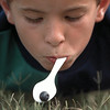 Clint Isenblitter, 7, concentrates to get the blueberry back on the spoon after he dropped it in the grass during the berry relay game at the Pittsburg Peach Berry Festival Saturday. If the blueberry was dropped, the kids were not allowed to touch it with their hands. Chris Matula photo.