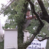 9/15/98---Mike Anderson of McCoy Tree Surgery of White Oak cuts branches from a tree resting on a power line on Green Street. The fallen tree cut power lines, blacking out many residents and businesses Tuesday. bahram mark sobhani