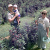 6/3/999Crazy Granny with her husband Robert and her thier grandson Alex in the berry patch. Kevin green