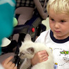 Jaxson  Evans ,2, holds a kitten at petco  during a pick of the litter adoption program Saturday July 31,2004. Ricardo B. Brazziell