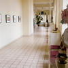 The inside of the Michelson Musuem of Art. Courtney Case/News Messenger Photo