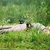A confederate soldier lies dead on the battle field Sunday May 6, 2007, during the reenactment of the Battle Of Port Jefferson. (Michael Cavazos/News-Journal Photo)