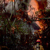 A Longview firefighters Friday battles a large blaze Friday at what officials believe was a vacant home.<br /> Nobody was injured in the fire, which started around 2:30 p.m. Friday at 1614 E. Cotton St., near the intersection of 14th Street.<br /> The block was cordoned off as firefighters doused the flames.<br /> Investigator Joey Cowan with the Longview Fire Marshal's office said he did not think anyone lived at the residence, a one-story, wood-frame home.<br /> Nobody was at the scene when emergency officials arrived, and the residence didn't have any utilities connected to it, Cowan said.<br /> It took firefighters about 15 minutes to subdue the flames, which left the back quarter of the home a charred frame.<br /> (Maggie Souza/News-Journal Photo)