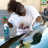 "Nikitta Redic washes the windshield of a car at the Wal-Mart in Kilgore Sunday as part of a ""giving back to the community"" project by New Birth Fellowship Church. (Justin Baker/News-Journal Photo)"