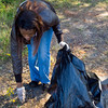 "Sekeitha Cox picks up litter Sunday as part of a ""giving back to the community"" project by New Birth Fellowship Church in Kilgore. (Justin Baker/News-Journal Photo)"