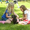 Grace Carter, 6, left, and Ella Nolte, 8, tie a numbered bib to Lollypop before theart of the Weiner Dog Races at the Fete for Pets fundraiser Saturday, March 31, 2012. (Les Hassell/News-Journal Photo)