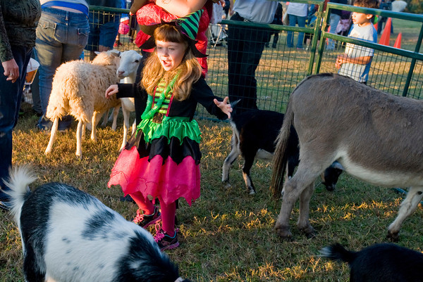 The silly witch Chyenne Hawkins, 5, visits the petting zoo while celebrating Halloween by attending Festival 31, on Wednesday October 31, 2012, at Mobberly Baptist Church. (Michael Cavazos/News-Journal Photo)