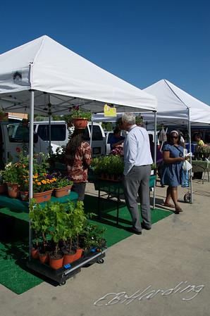 11-05-19 WS Farmer's Market