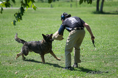 11-06-08 K9 Unit Training