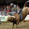 "Cody Rodeo Tyler, of  Perry Okla., tries to stay atop ""Modified Hou"" during the LJ Jenkins Bull Riding Tour Finals on Saturday night at Memorial Hall.<br /> Globe 