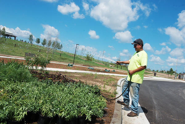 Globe/Roger Nomer<br /> Manuel Mendez, with Sharum Landscaping and Design, waters new plants at Mercy Park on Monday.