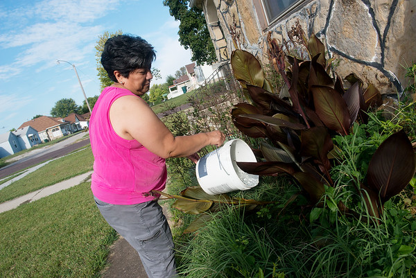 Globe/Roger Nomer<br /> Adela Garcia waters her plants on Wednesday in Monett.