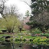 BEN GARVER — THE BERKSHIRE EAGLE<br /> The landscape at the Berkshire Botanical Garden is budding and blossoming into spring and out of winter,  Monday, April 27, 2020.