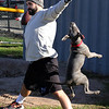 Lynn, Ma. 11-20-17. Jace Waldman, Distirct 45, and Chasse the dog do warm-ups before the star of the restaurants gridiron battle at Kiley Park today.
