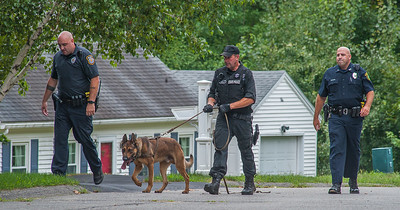 A State Police K9 and Trooper along with Westminster PD emerge from the woods behind Scenic Ave in Westminster after a suspect fled from a terminated pursuit and crash on Rt 2. The suspect Brian Lafrennie was later apprehended on felony warrants on nearby Saunders St. Gardner.
