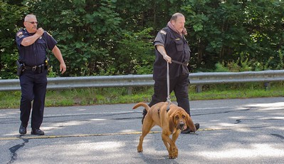 Gardner PD along with a bloodhound from the Worcester County Sherriff search along Rt 68 near the Hubbardston line for missing Asperger's patient.