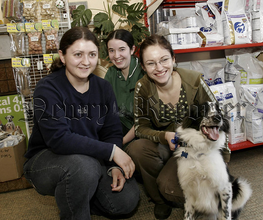 Newry Vetinary and Oaklands  Clinic, in picture,Judith (Nurse), Agata and Eliza, visiting Vets from Poland. 05W14N27