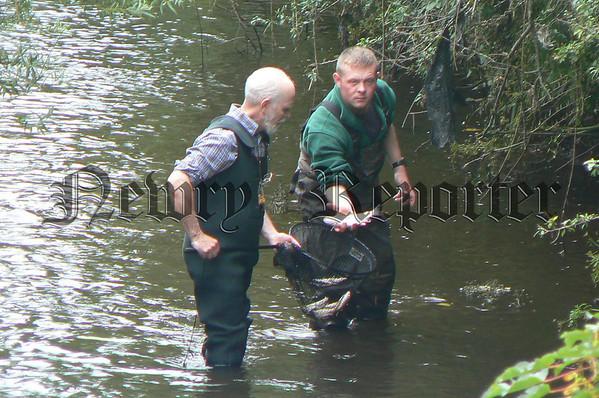 07W31N136 (W) Fish Kill