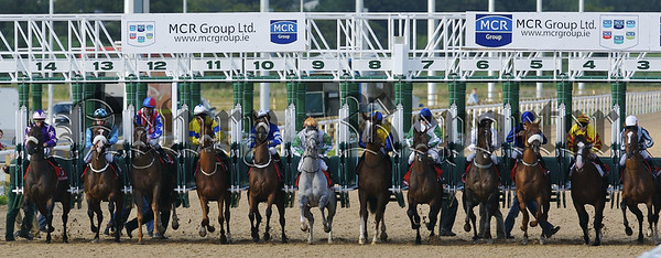 MCR Group Raceday at Dundalk Stadium