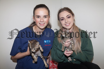 Aimee and Rachel are pictured with some of the kittens available for rehoming at the RSPCA centre. R1830012