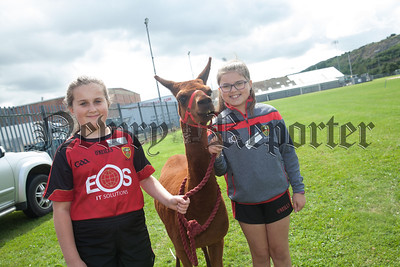 Oonagh and Martha pictured with a Llama. R1830020